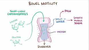 Irritable bowel syndrome treatment Sydney
